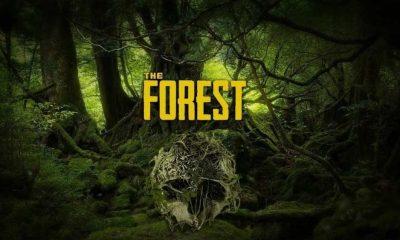 Is Forest a Cross-Platform