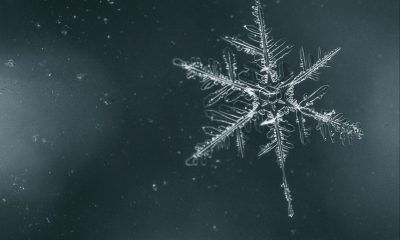 Snowflake Test